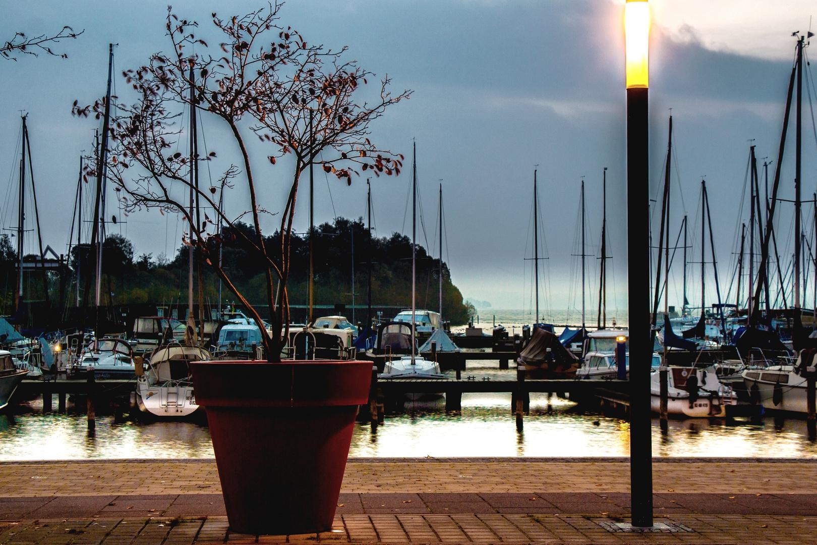 Heute am Schweriner See (1)