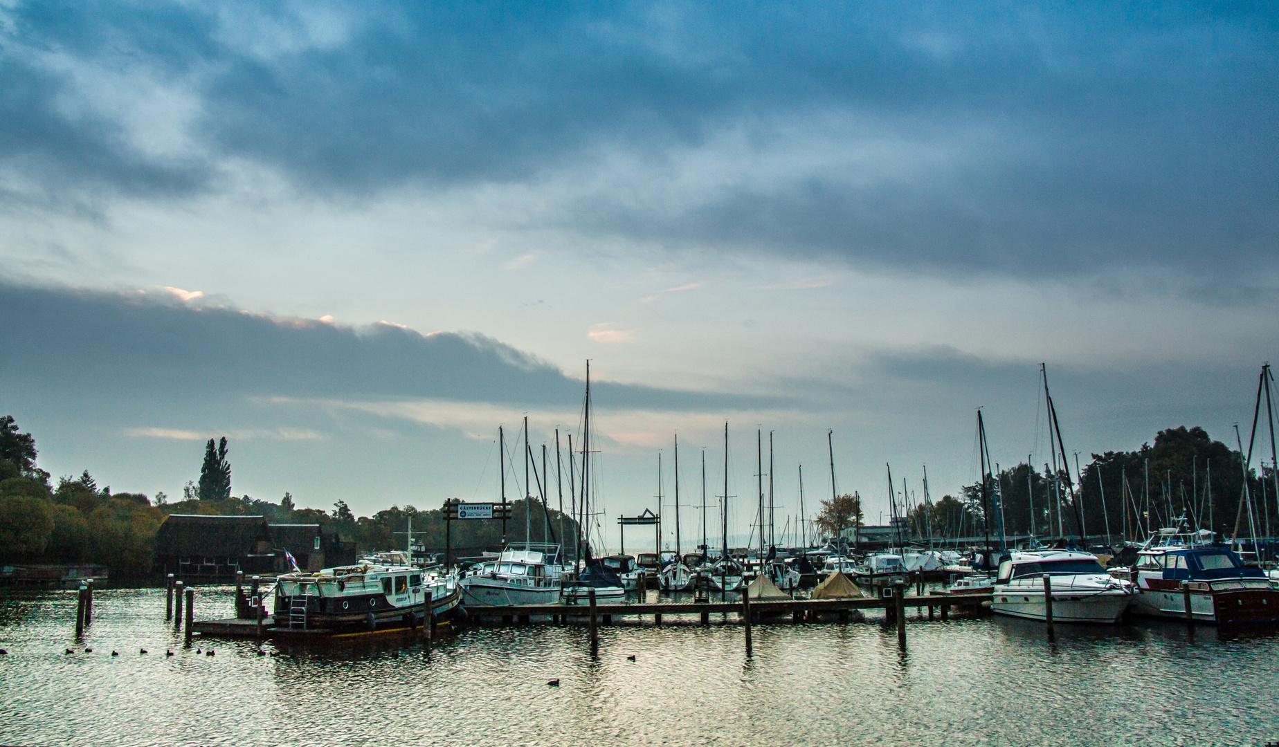 Heute am Schweriner See (2)