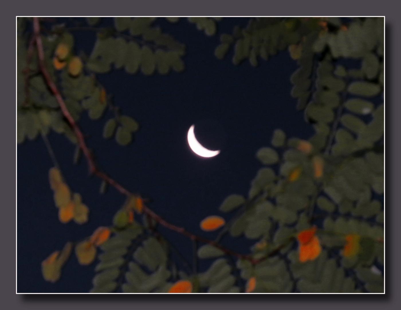 heute früh begegnet : den deutlich abnehmenden 6.30 Uhr Sonntags-Mond,