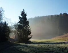 Heute früh bei Nettersheim in der Eifel...ein schönes Fleckchen Erde!