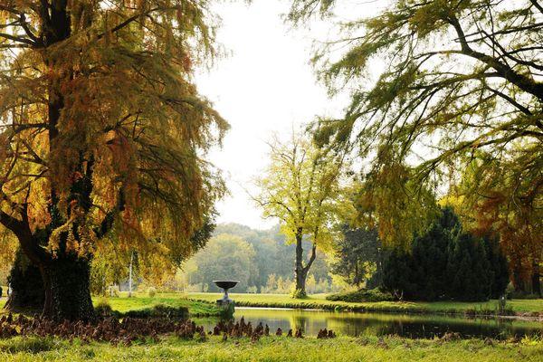 Heute - herbstliche Impressionen aus dem Park ohne Sorgen