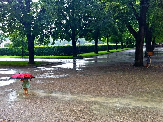 Heute im Hofgarten