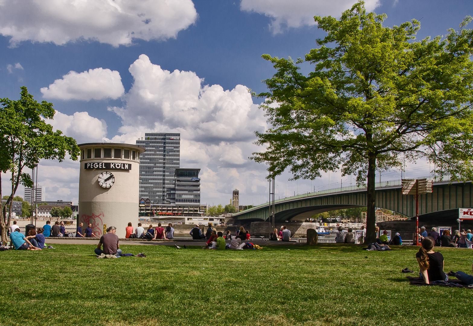 Heute mittag im Rheinpark...