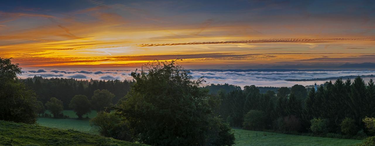 Heute morgen - Ilkahöhe / Starnberger See