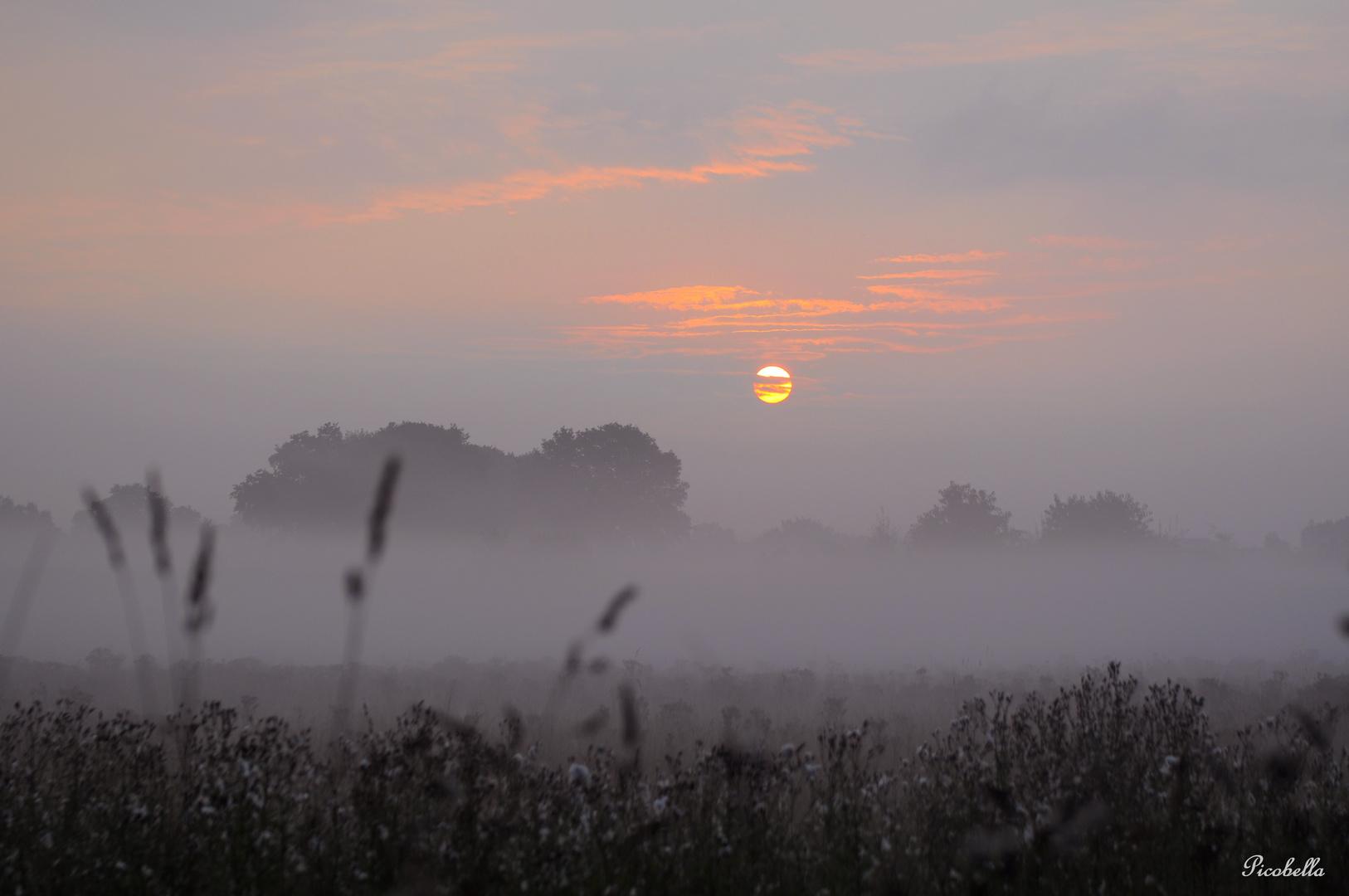 Heute Morgen im schönsten Bundesland ......