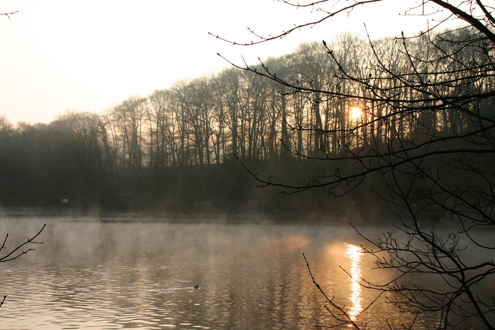heute Morgen um 8.00Uhr an der Ruhr