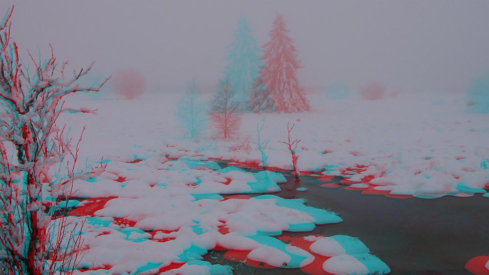 Heute nachmittag im gespenstigen Moor (3D-Bild)