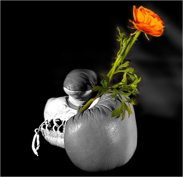 ......heute schon Blumen bekommen???