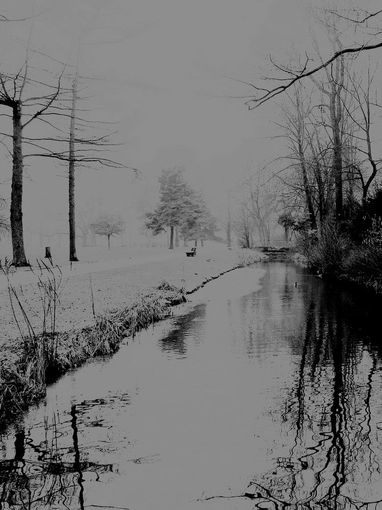 heute - so wintergrau