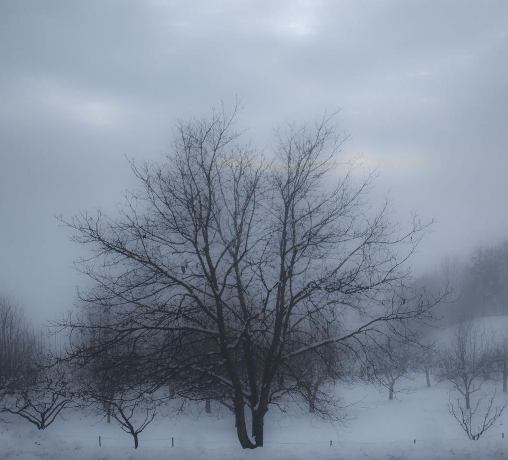 Heute vor unserem Fenster