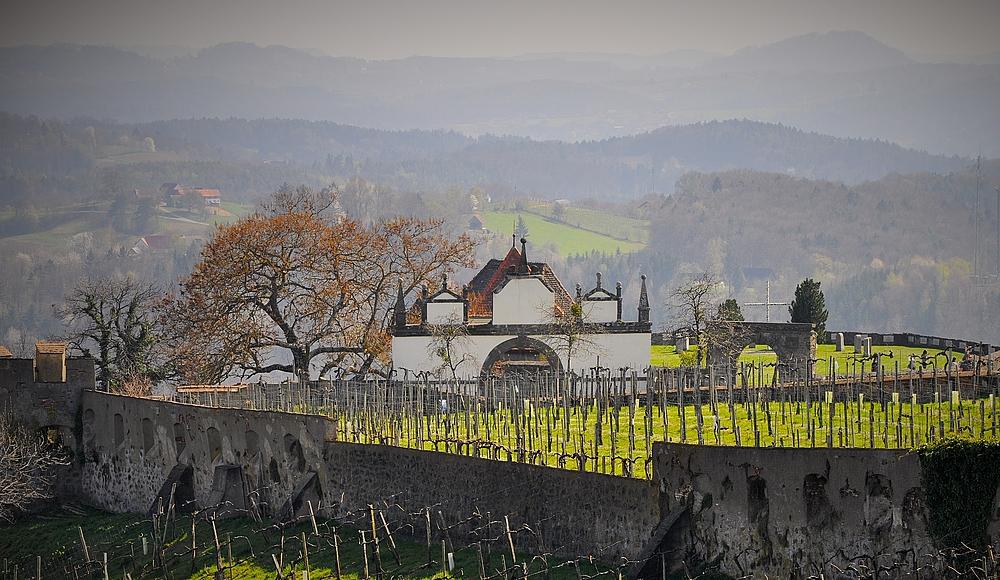 ... heute wird in den weitläufigen Anlagen der Riegersburg Wein angebaut