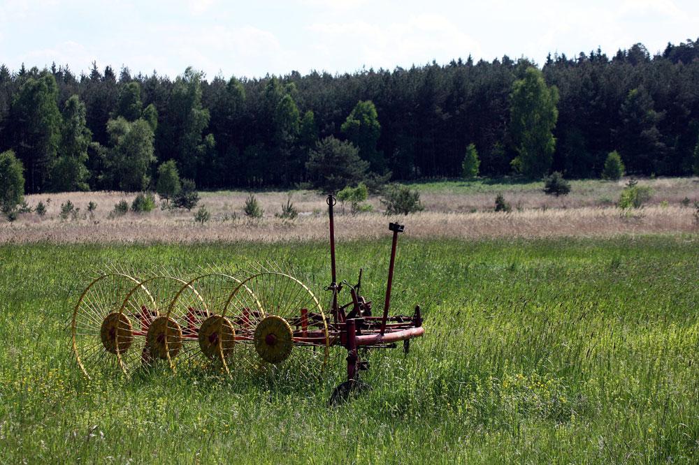 Heuwender auf den Moorwiesen