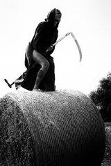 Hexen reiten nicht mehr auf dem Besen