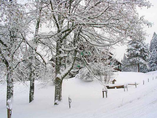 Hexenhäuschen im Winterwald