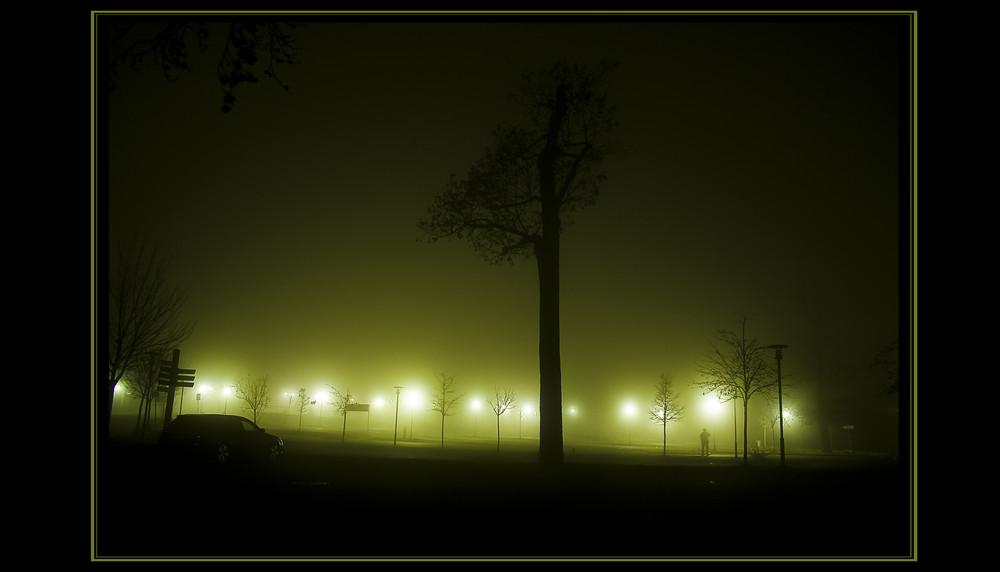 Hexentanzplatz in Nebel gehüllt ,,Shrouded in Mist''