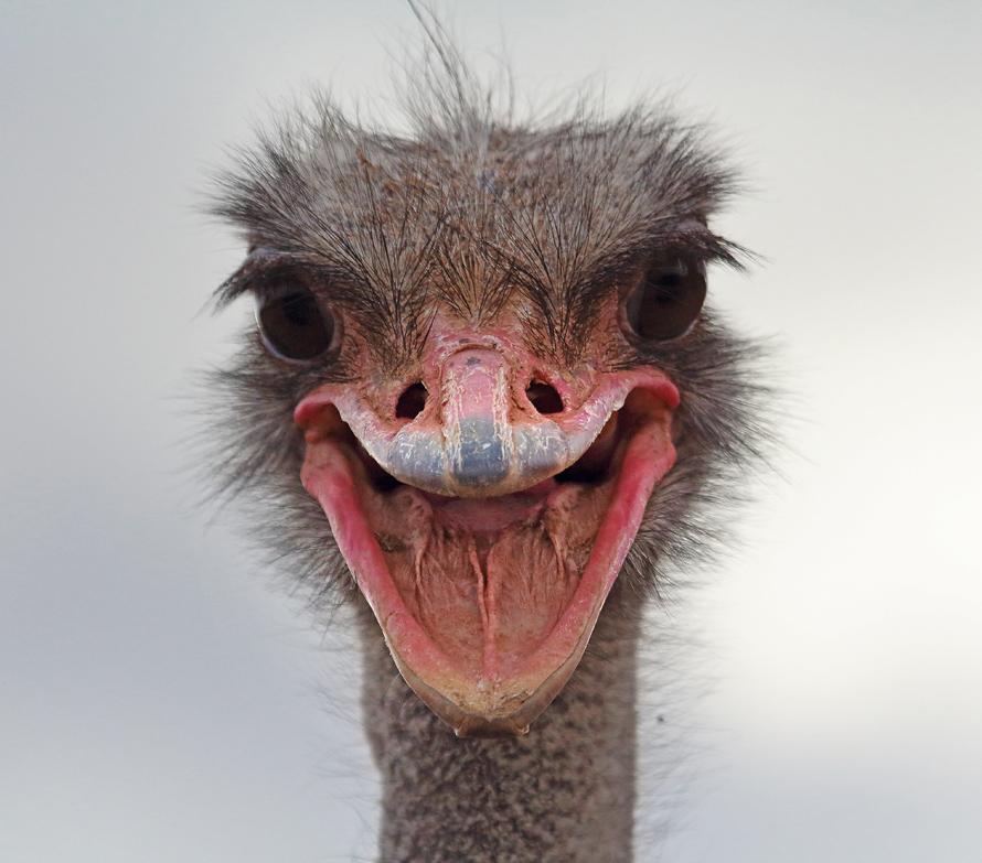Hi !!!