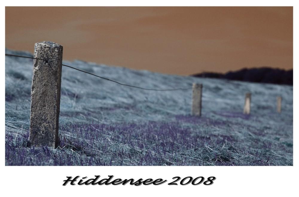 Hiddensee 2008