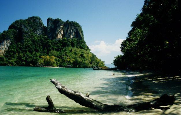 Hier in der Nähe muss mein perfekter Strand sein...