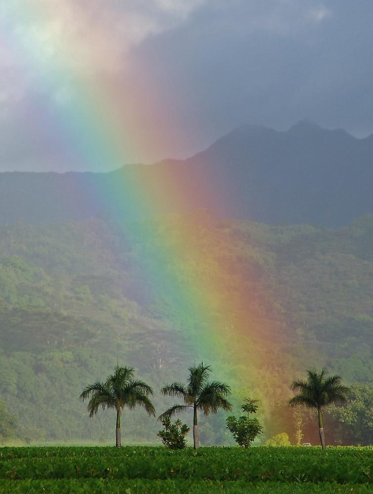 Hier liegt das Gold am Ende des Regenbogens
