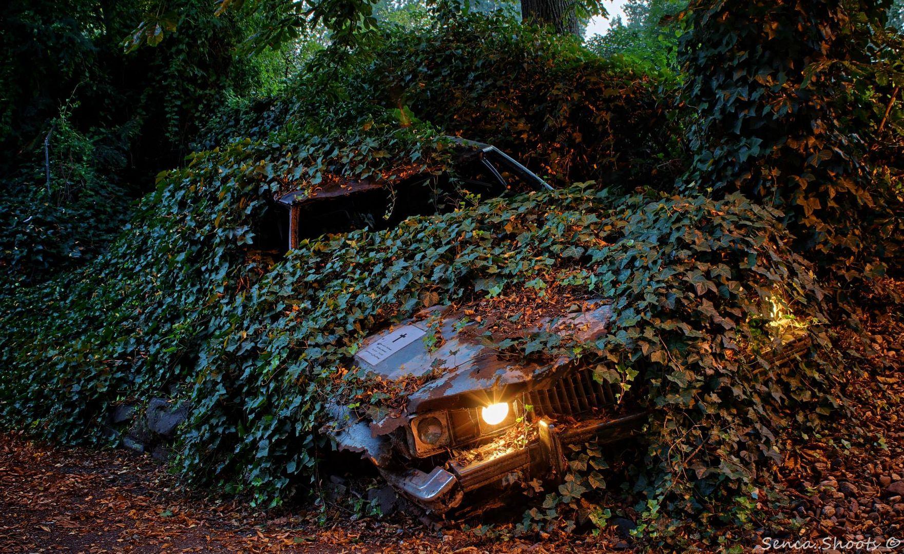 Hier ruht in Unfrieden Cadillac Fleetwood, 25.10.72 - 16.9.83, gefahren von Elvis Presley