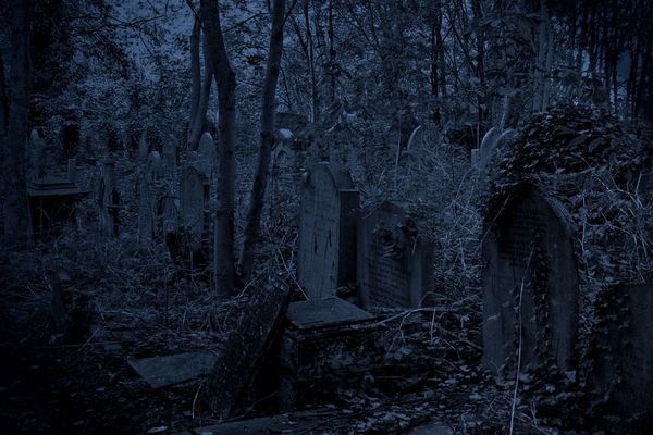 Highgate Cemetery London 2