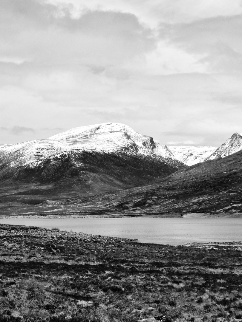 Highland feeling_2