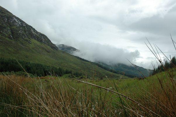 highland summer