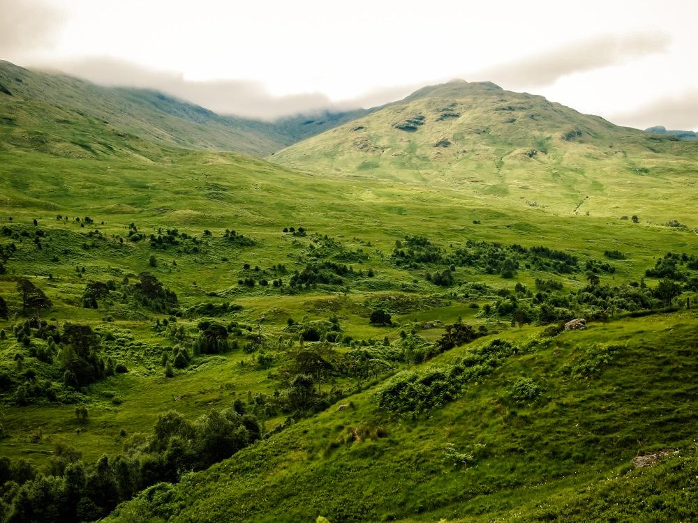 Highlands #3