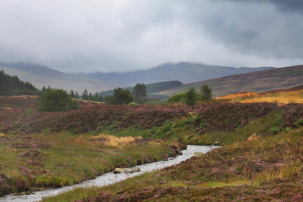 Highlands im Regen