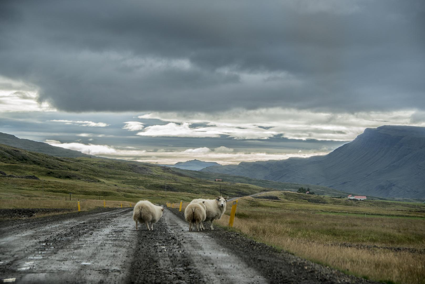 Highway :)