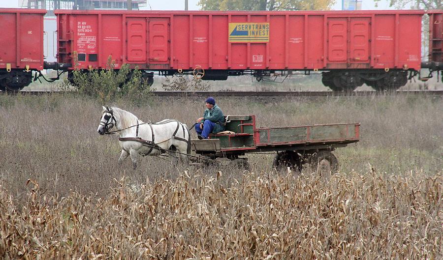 Hilfsgütertransport nach Rumänien (7)