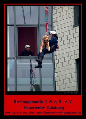 Hilfsorganisation I.S.A.R.Germany...Feuerwehr-Rettungshunde...
