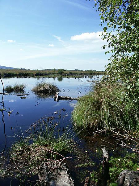 Hiller Moor im September 2003