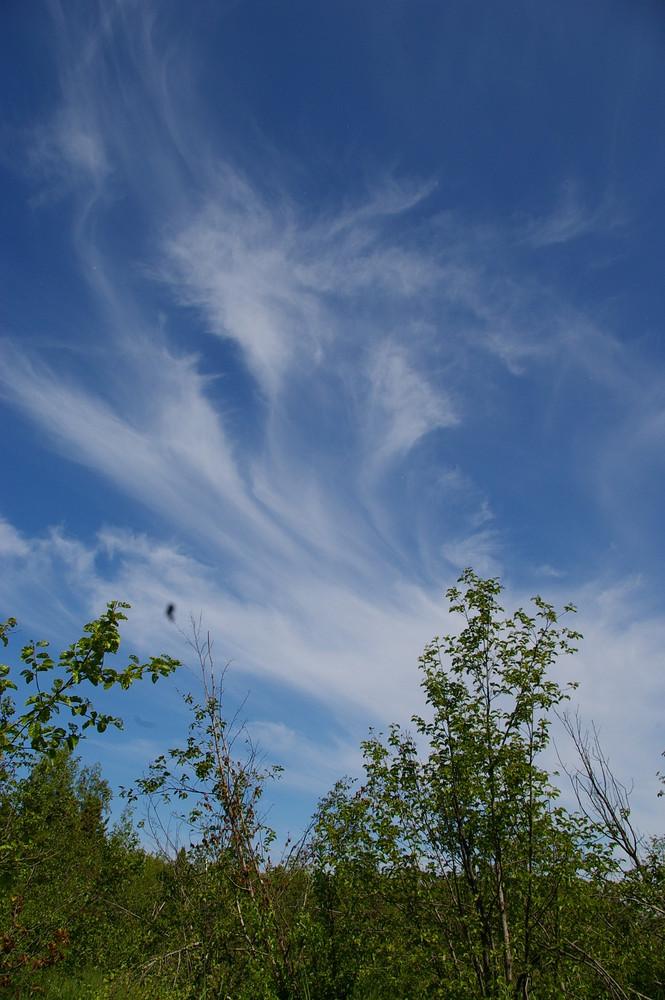 Himmel in Alaska