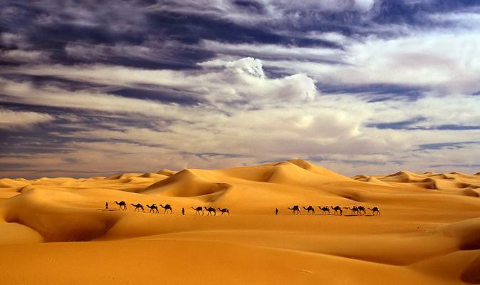 Himmel, Sand und Kamele -RELOAD- das Original (s.u.) fiel im Voting durch