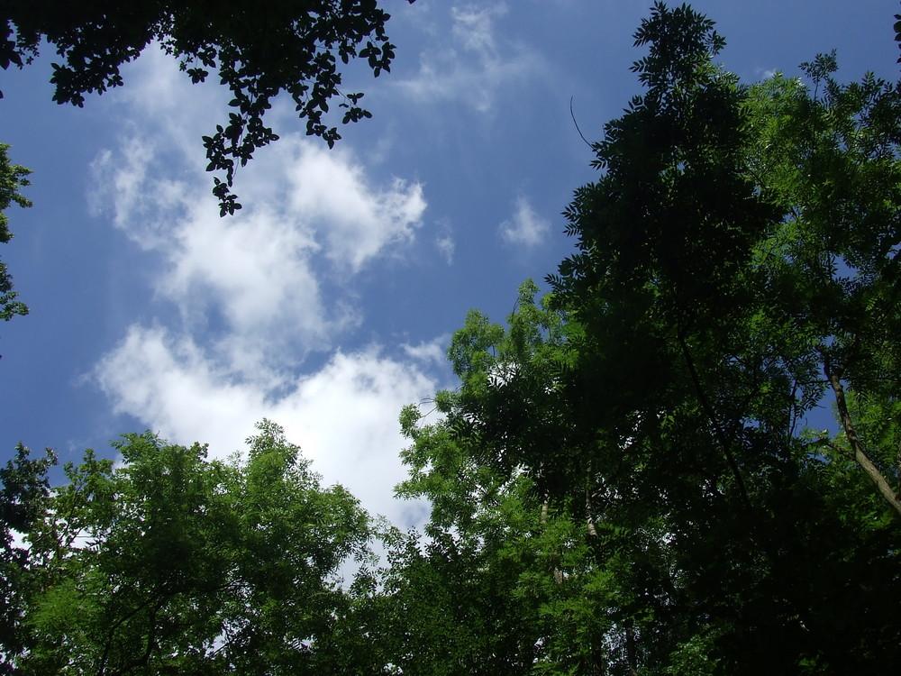 Himmel =) Sommer