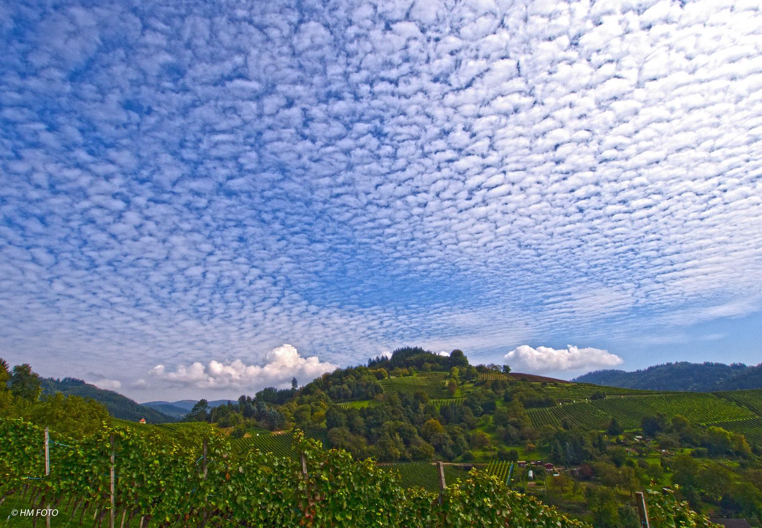 Himmel über dem Weinberg