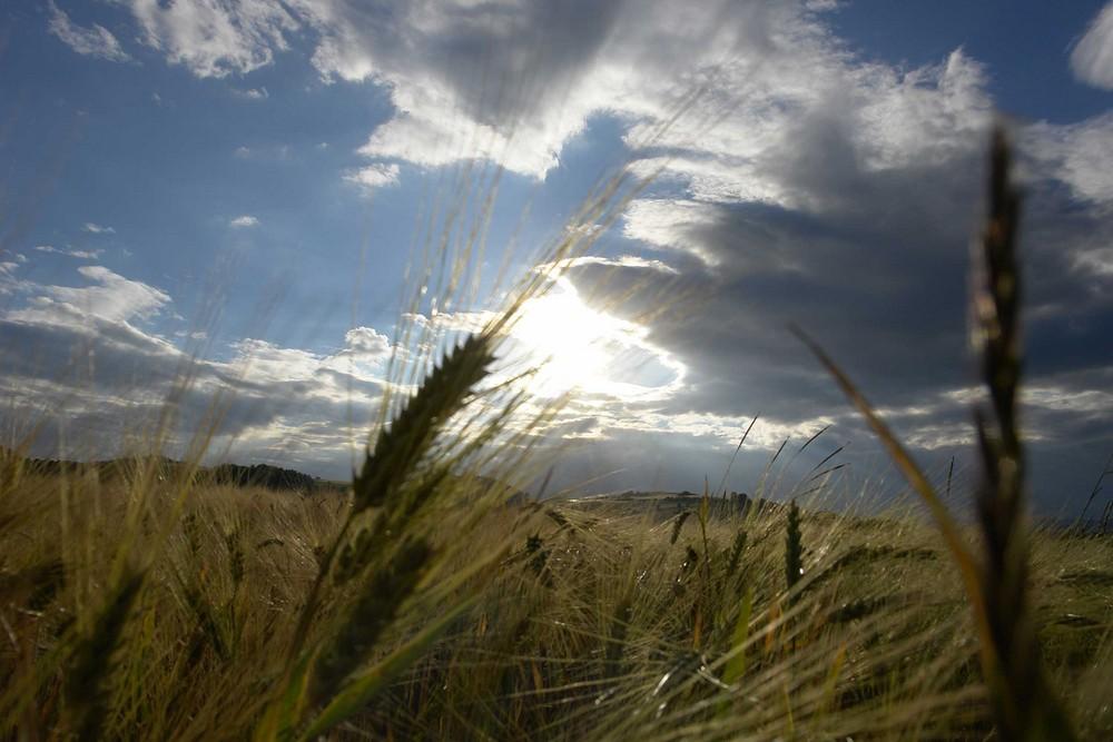 Himmel und Erde..........