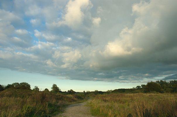 Himmel und Heide
