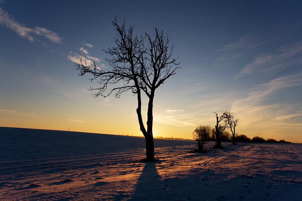 Himmelsfarben im Winter