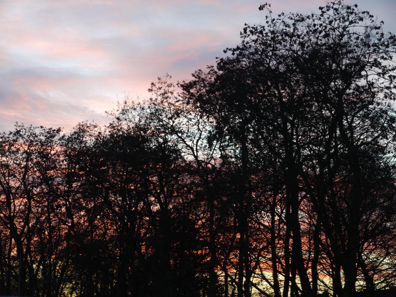 Himmelsglück im Winter