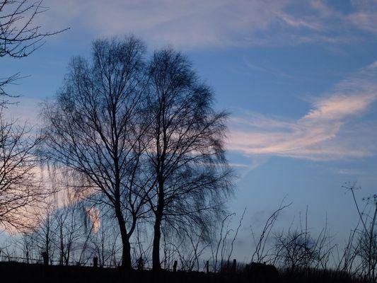 -Himmelszeichen in der Abendsonne-