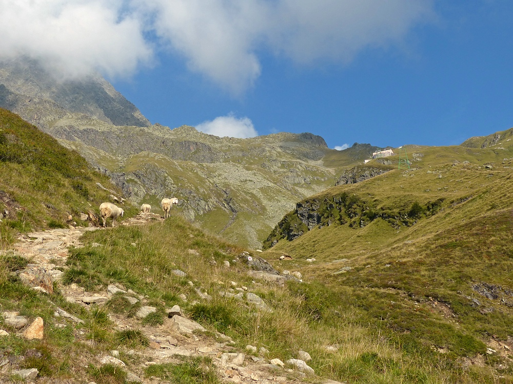 Hinauf zur Innsbrucker Hütte