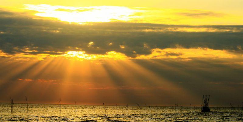 Hinaus aufs Meer in der Abendsonne...