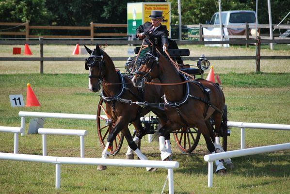 Hindernissfahren Turnier Herford 14.06.2009