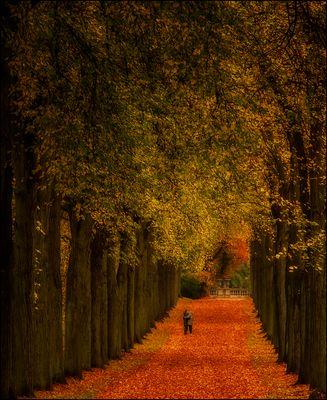 Hinein in den Herbst ...