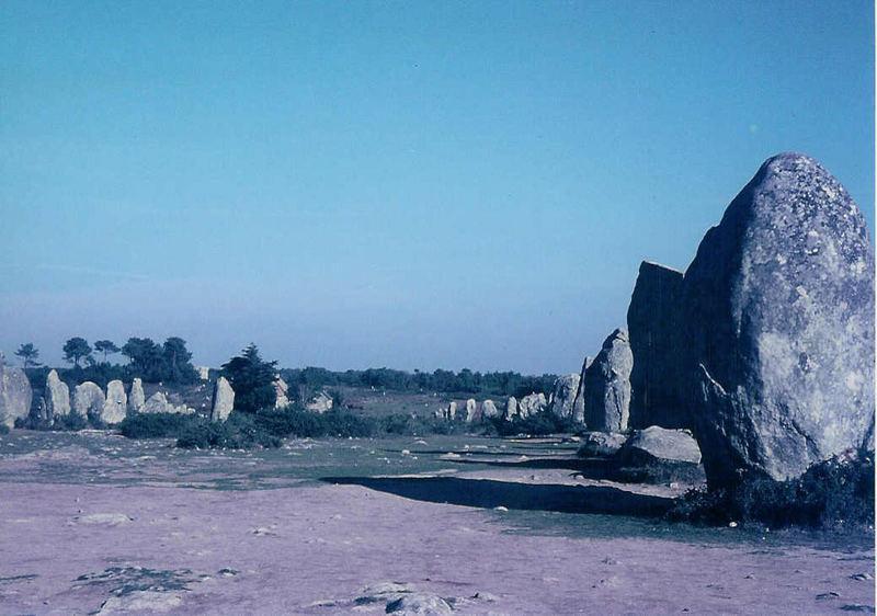 Hinkelsteine in Carnac (1)