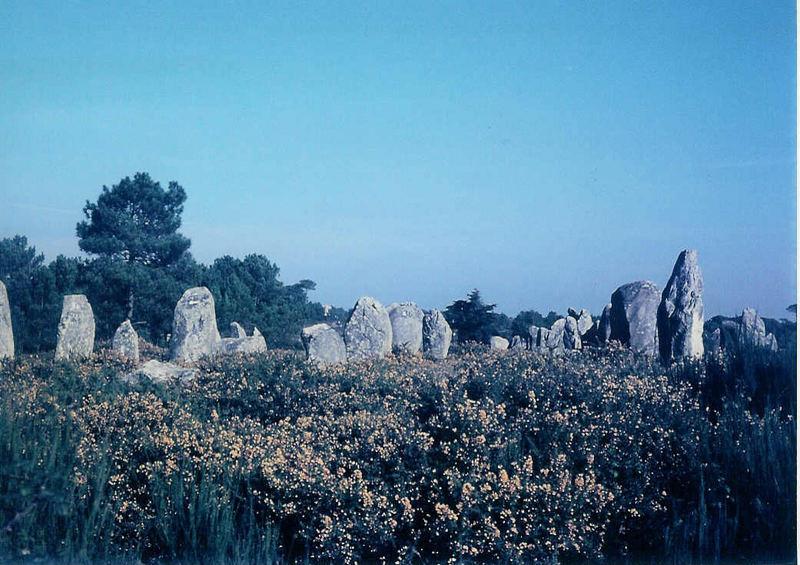 Hinkelsteine in Carnac (2) - Menhirs à Carnac (2)