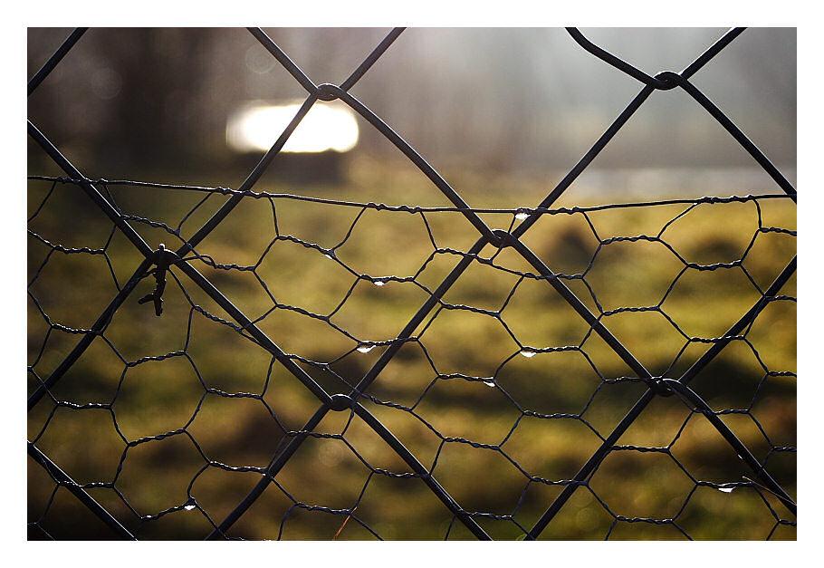 Hinter dem Gitter