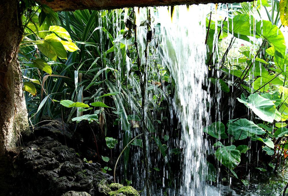 ~Hinter dem Wasserfall~